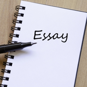 Online Professional Essay Writing Assistance